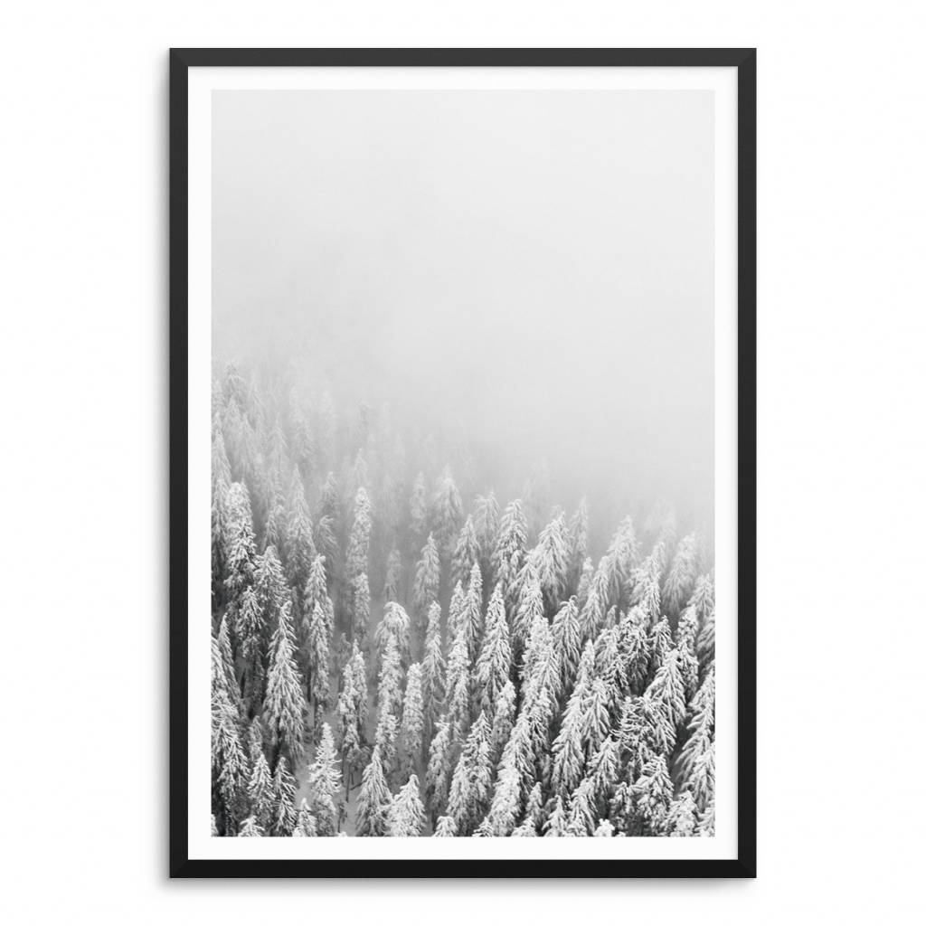 Lovely Bird Forest No. 1 Poster