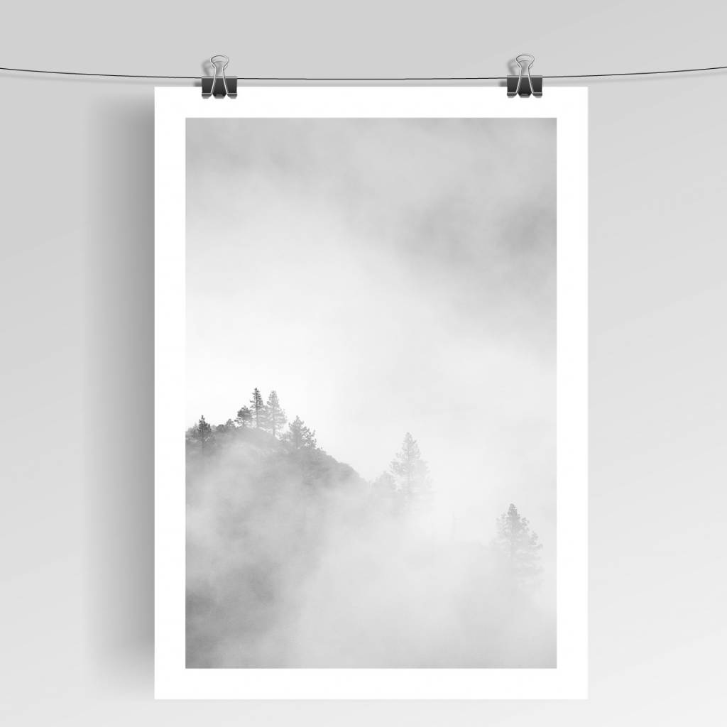 Lovely Bird Misty Mountain No. 1 Poster
