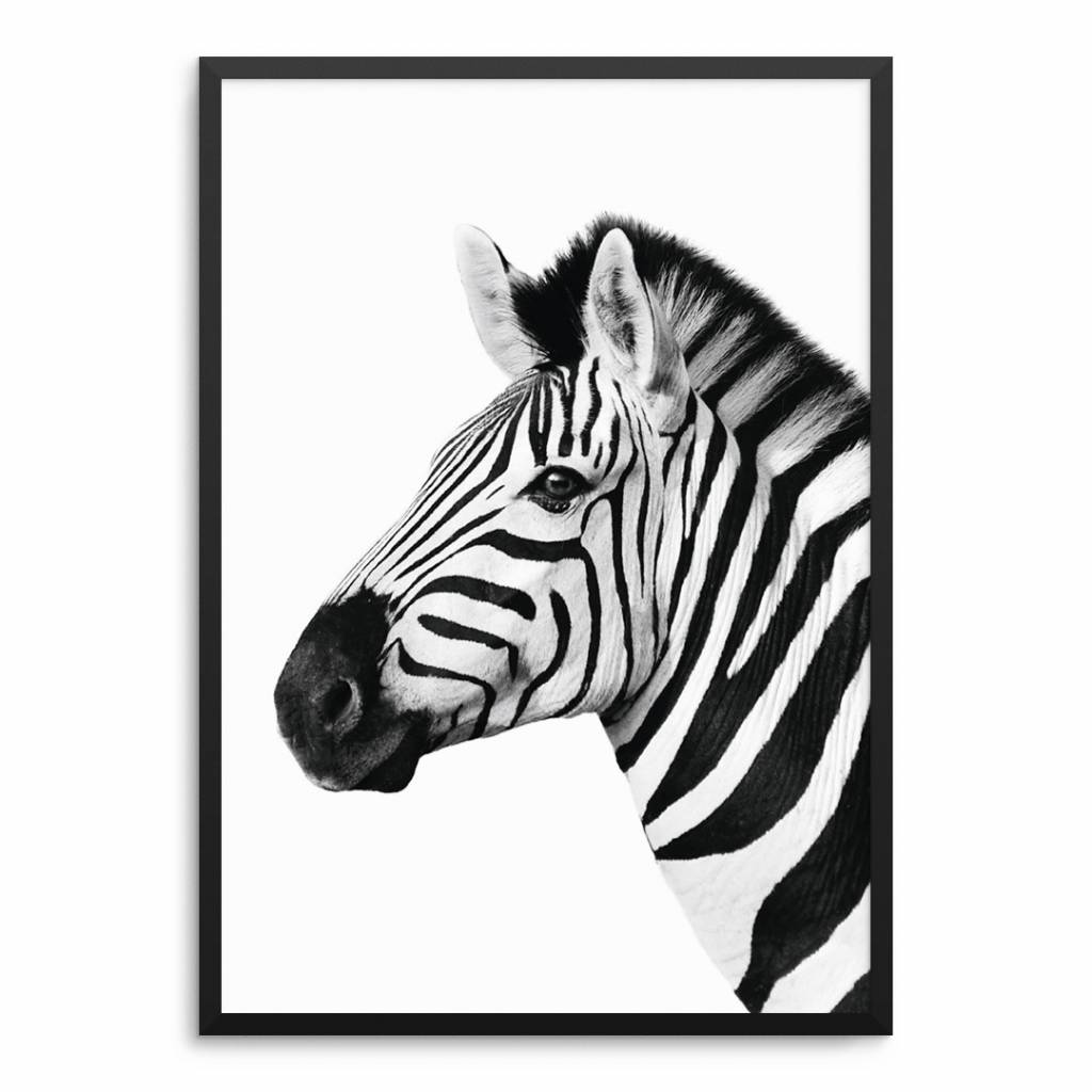 Lovely Bird Zebra Poster