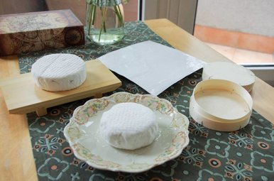 Cashew Camembert Cheesemaker Kit