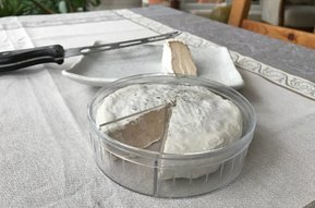 Camembert Container