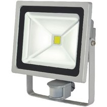 LED Floodlight met Sensor 50 W 3500 lm Grijs