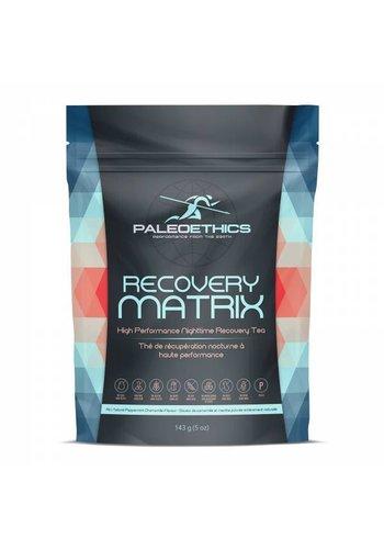 PaleoEthics Recovery Matrix