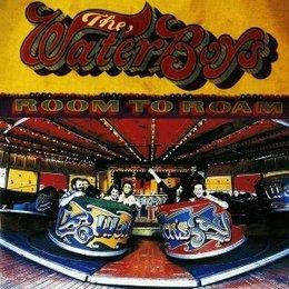 The Waterboys - Room To Roam (LP-Vinyl)
