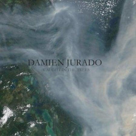 Damien Jurado - Caught In The Trees (LP)