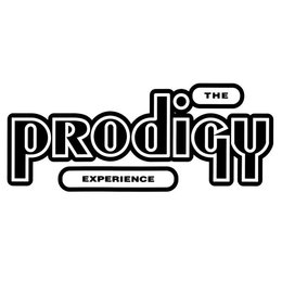 Prodigy - Experience