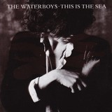 The Waterboys - This Is The Sea (LP-Vinyl)