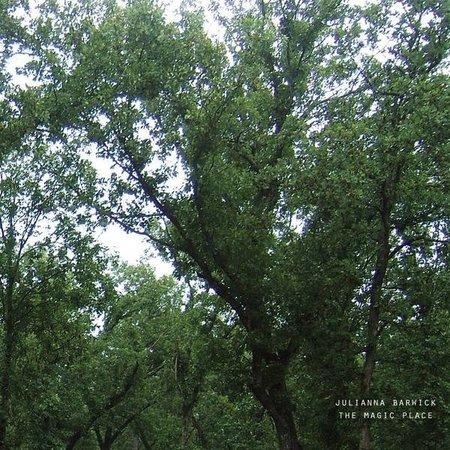 Julianna Barwick - The Magic Place  (LP-Vinyl)