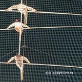 Messthetics - The Messthetics
