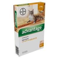 Advantage Kat tot 4 KG