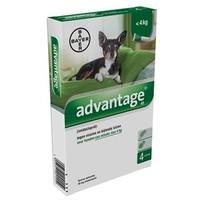 Advantage voor honden