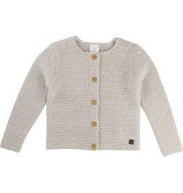 Carrement Beau Cardigan tricot Y15186