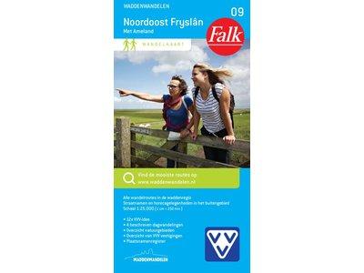 Falk 09. Noordoost Fryslân met Ameland, picture 86020298