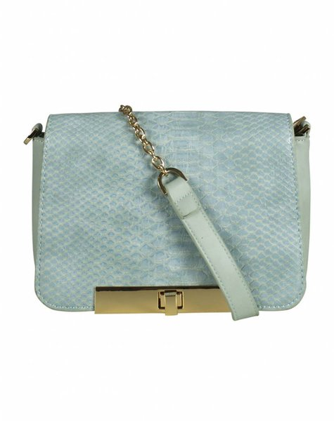PREPPY BLUE SNAKE BAG