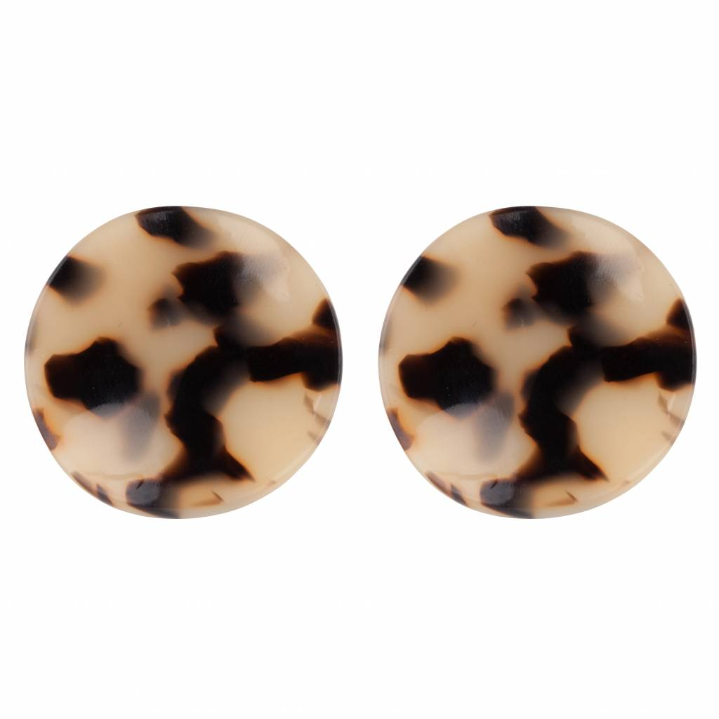 TURTLE COIN STUDS