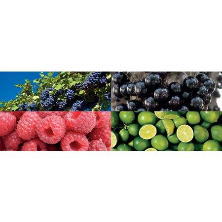 Sticker Fruit Voor Kerri Fietskrat