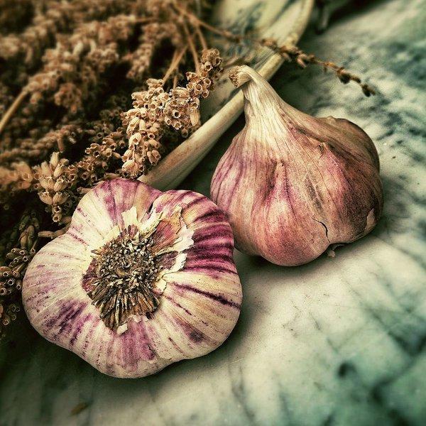 Bertolli Garlic