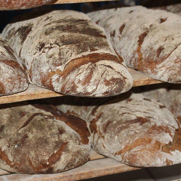 Verstegen Bruin brood