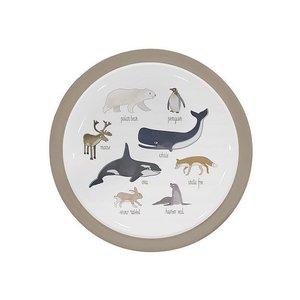 Sebra Sebra bordje Arctic Animals 0+