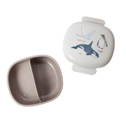 Sebra Sebra lunchbox arctic animals