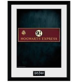 Harry Potter - Platform 9 3/4 Framed Print
