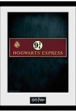 Harry Potter - Platform 9 3/4 Framed Print