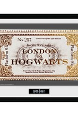 Harry Potter - Hogwarts Ticket Framed Print