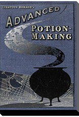Harry Potter - Advanced Potion Making Canvas Print