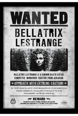 Harry Potter - Bellatrix Lestrange Wanted Poster Framed Print