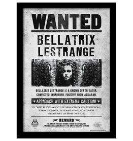 Harry Potter - Bellatrix Lestrange Wanted Poster Framed Print