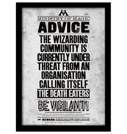 Harry Potter - Be Vigilant Poster Framed Print