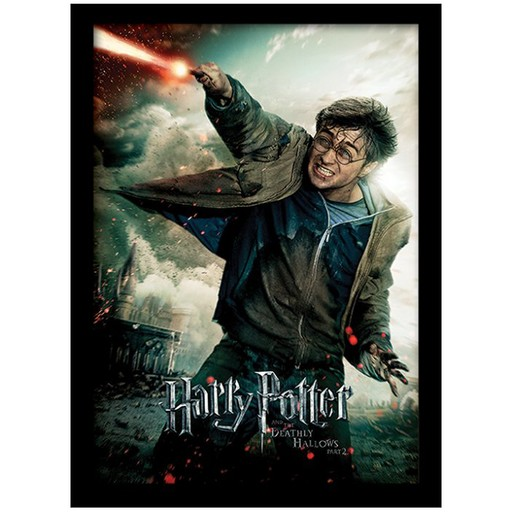 Harry Potter - The Deathly Hallows Part 2 Framed Print
