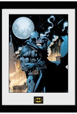 Batman - Moonlit Kiss Framed Print