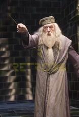 Harry Potter - The Elder Wand in Ollivander's Box