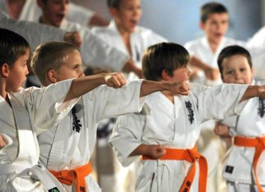 Kyokushin Wear Kids