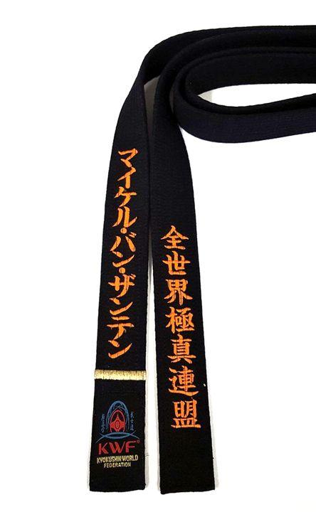 protection taekwondo