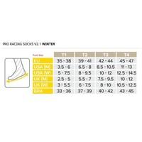 Compressport Proracing V2.1 winter bikesocks