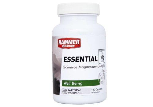 Hammer Nutrition Essential magnésium MG