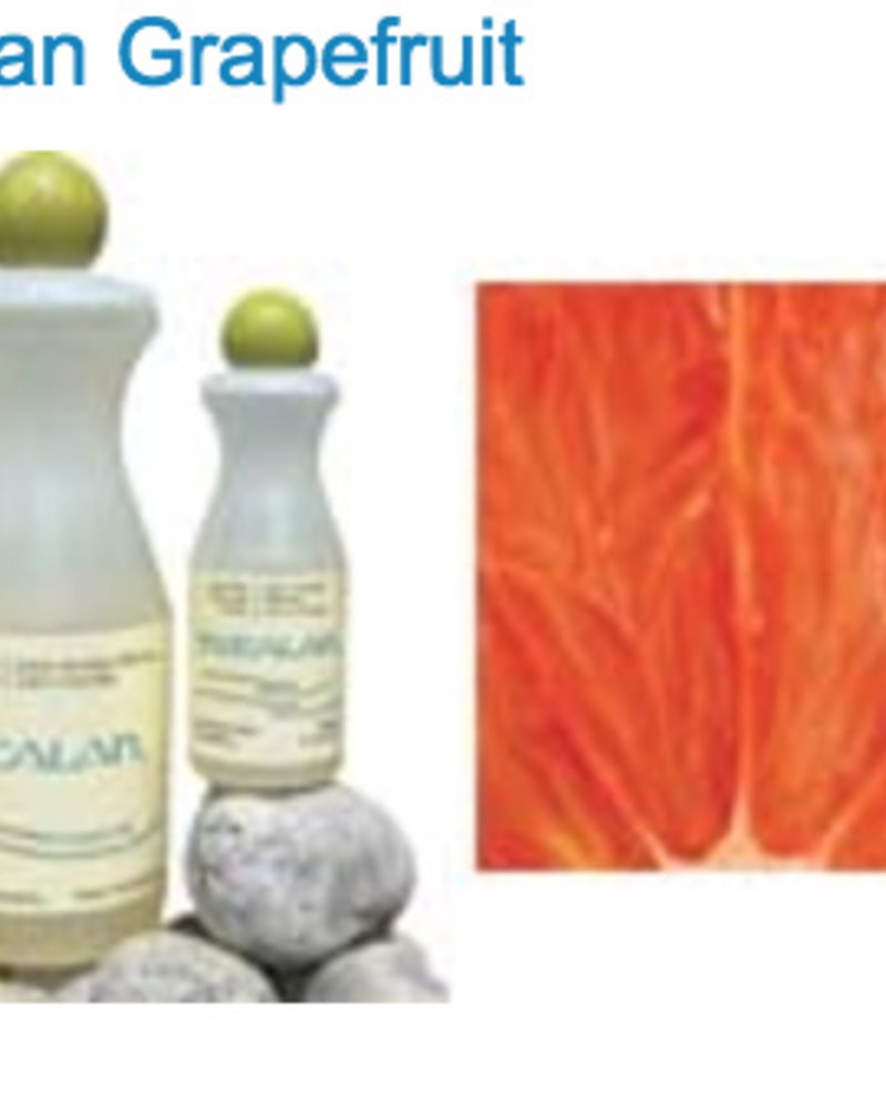 Eucalan pompelmoes 100 ml
