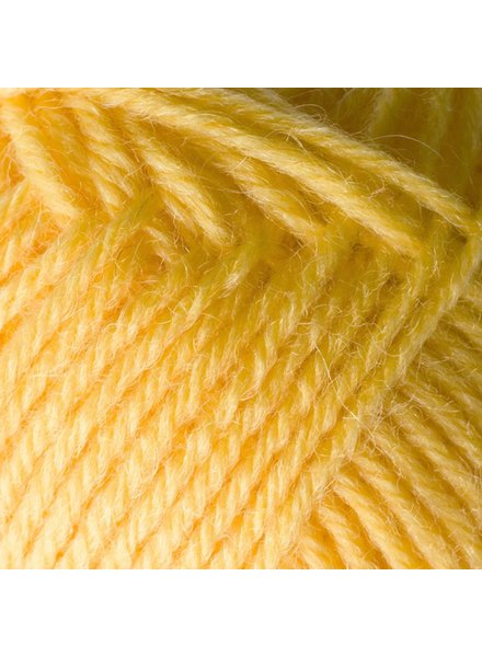 Regia My first Regia (25gr) 1022 geel