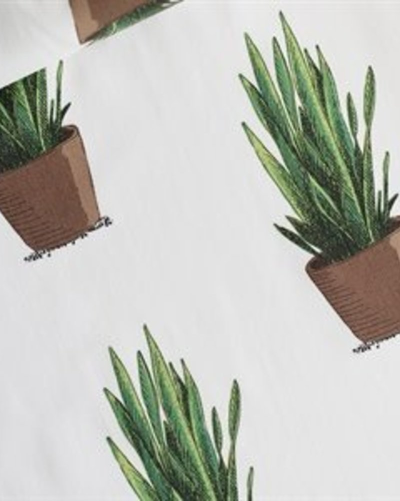 French Terry - Sanseveria