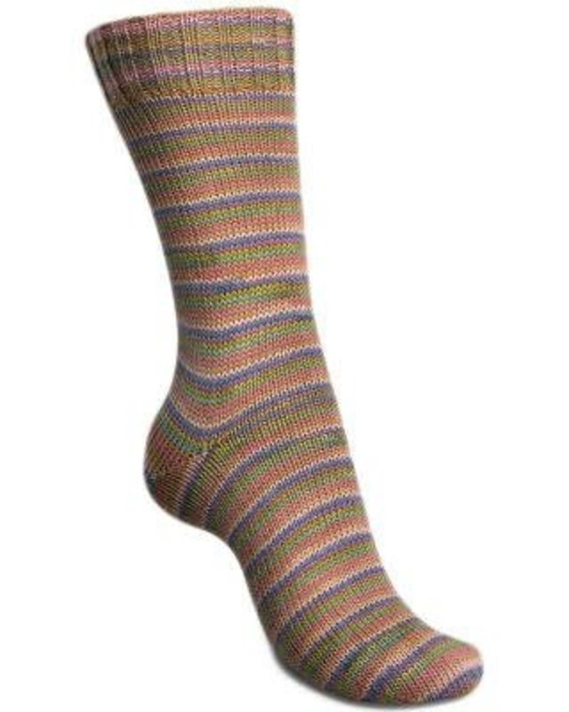 Regia Mini Stripes Color 4-draads 2992 Summer (100 gr)
