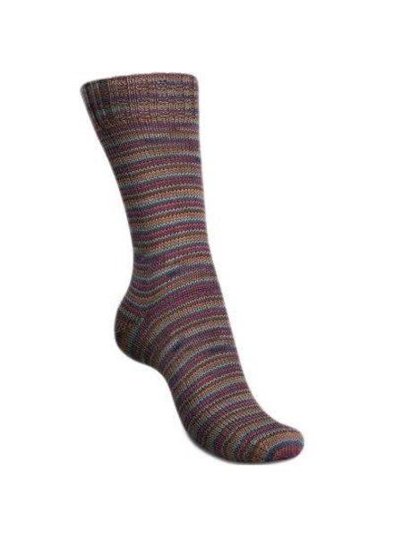 Regia Mini Stripes Color 4-draads 2993 Autumn (100 gr)