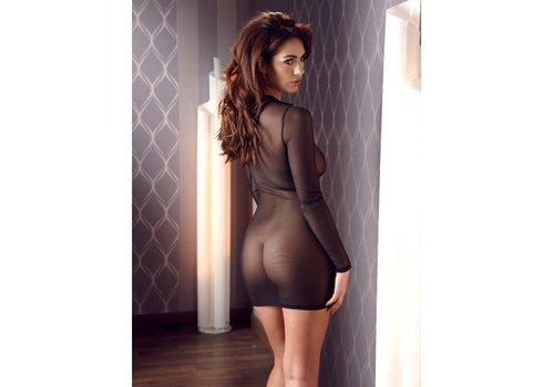 Transparent Long Sleeve Dress