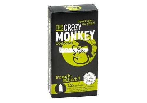 TCMC Fresh-Mint! Pack of 12