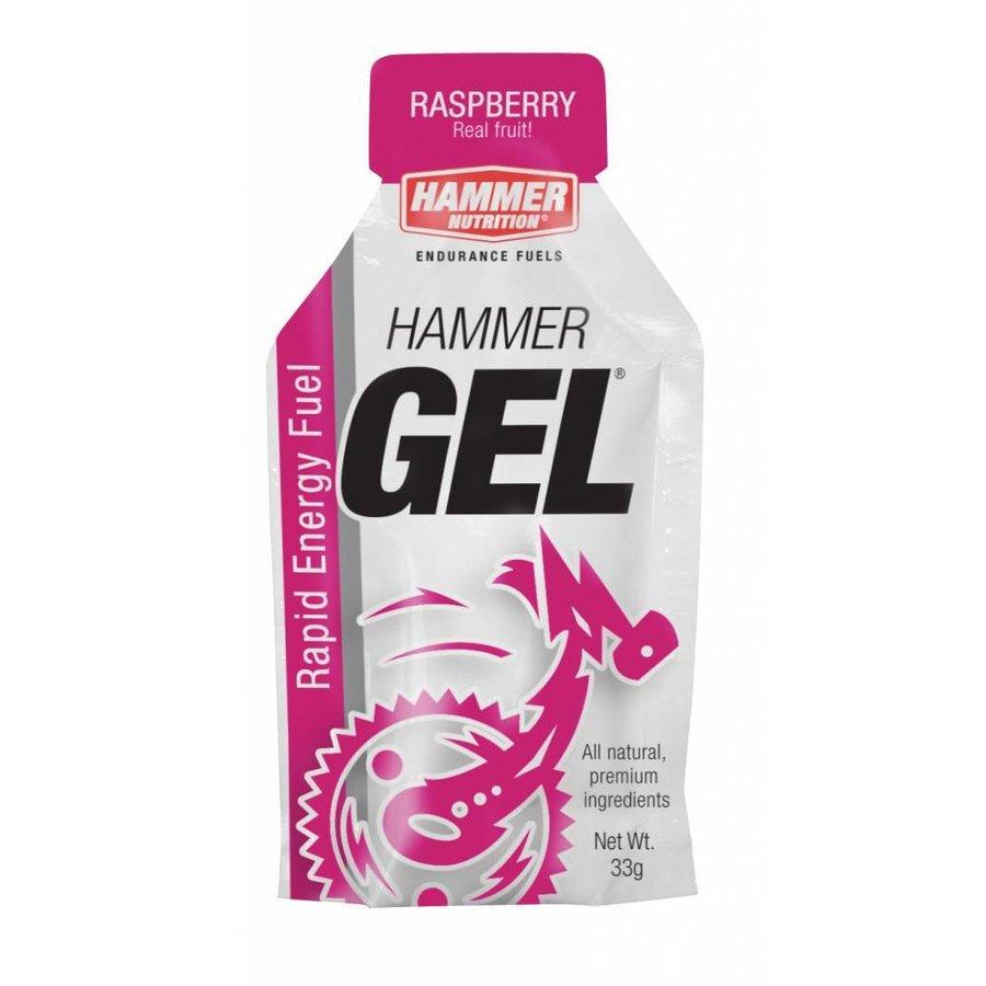 Hammer Nutrition Energiegel (33 gr)-4