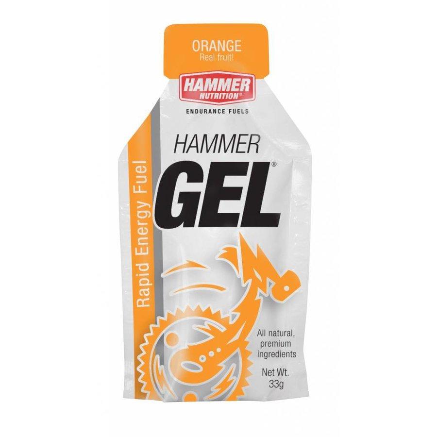 Hammer Nutrition Energiegel (33 gr)-6