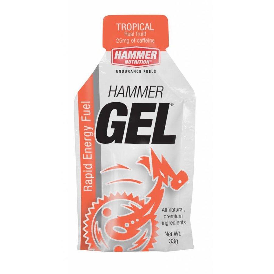 Hammer Nutrition Gel + Cafeine  (33 gr)-1