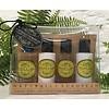 THE SOMERSET TOILETRY TST Ginger & Lime Travel Cream Set