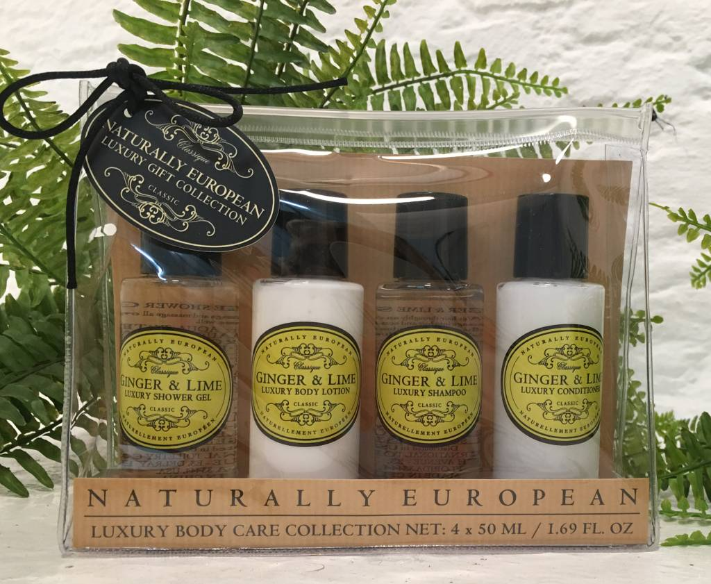 THE SOMERSET TOILETRY TST Ginger & Lime Travel Cream Set
